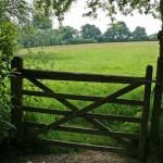 Имуществнный вычет по приобретению земельного участка